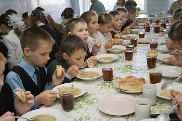 Беженцев с Украины в Смоленске будут бесплатно кормить